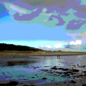 anglesey art